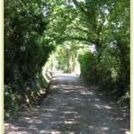 Sentiers d'Aubigny