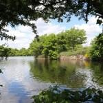 Lac de Graon ter