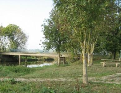 Pont de Noailles