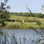 Golf Talmont